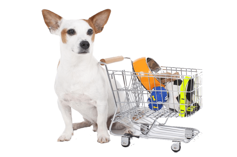 pet supplies in Australia