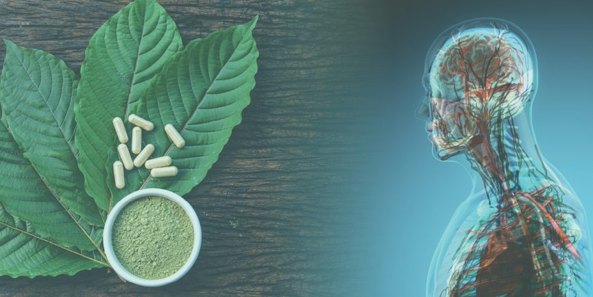 A detailed review about kratom