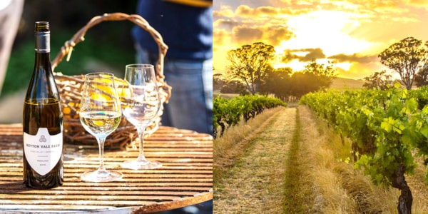 A Guide For Wine Tours The Barossa Valley